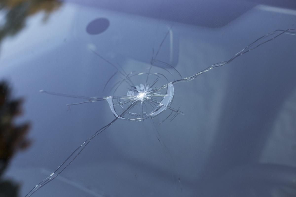 Super Ruitschade: wat dekt je autoverzekering? | Consumentenbond QH01