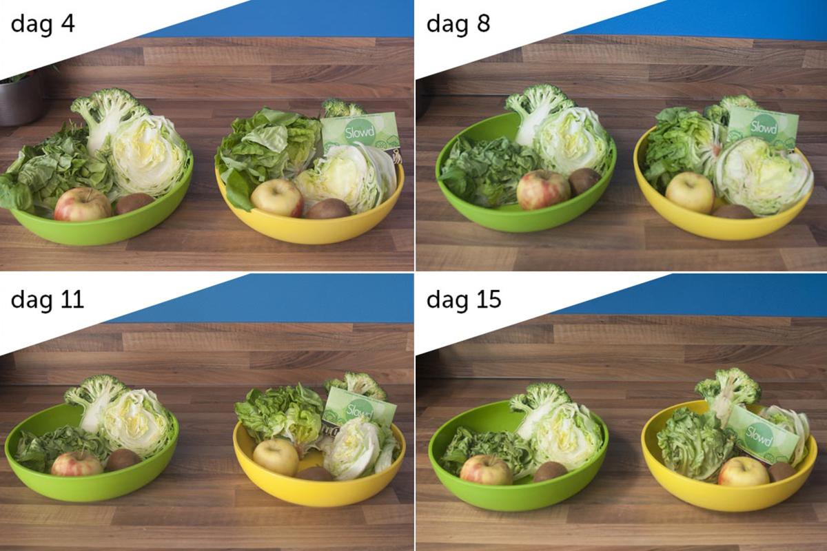 Slowd-groente-binnendekoelkast-compilatie-v1 (1)