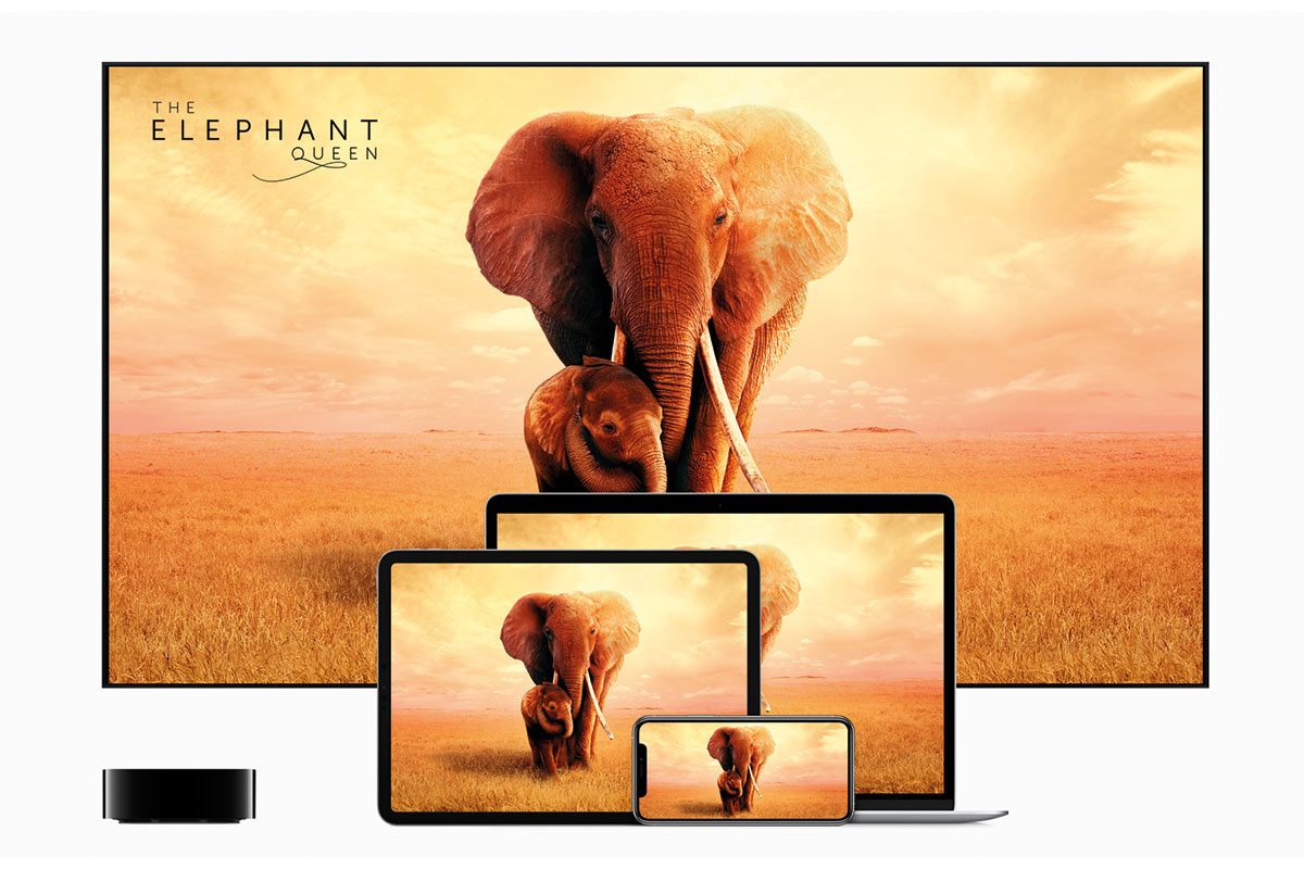 apple-tvplus-now-available-the-elephant-queen-11119