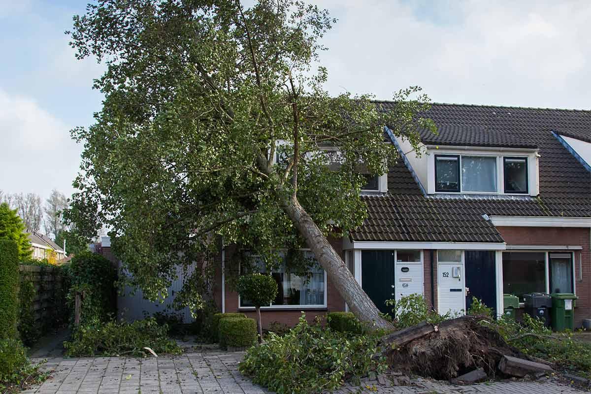 Afbeeldingsresultaat voor stormschade
