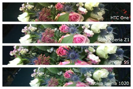 Daglicht-bloemen-klein