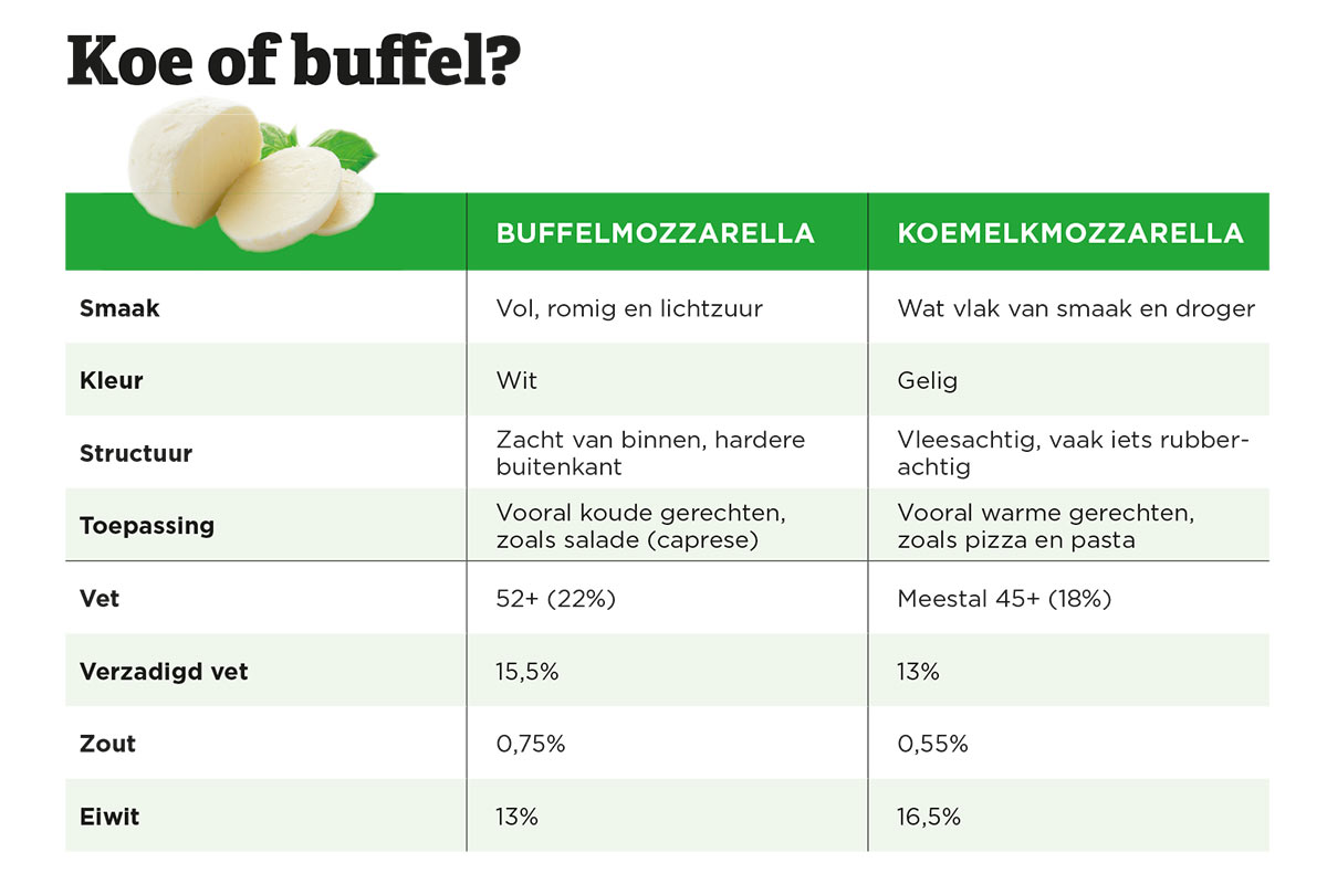 koe-of-buffel-mozzarella